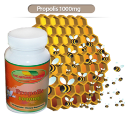 wholesale propolis bee products